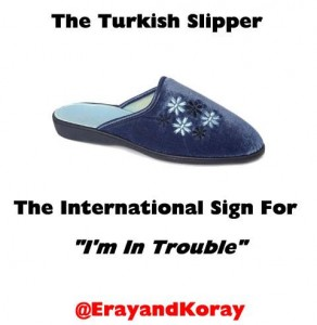 Turkish Slipper